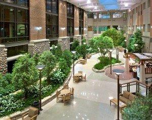 Interior atrium design maintenance plants popular house - Cobertizos para jardin ...